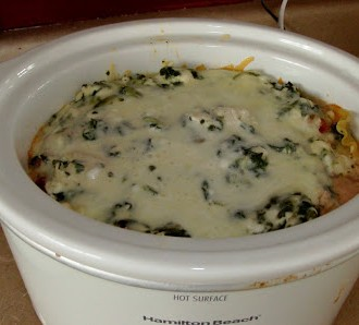 Slow Cooker Chicken and Spinach Lasagna