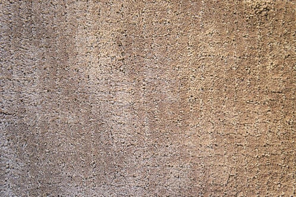 Brown carpet samples