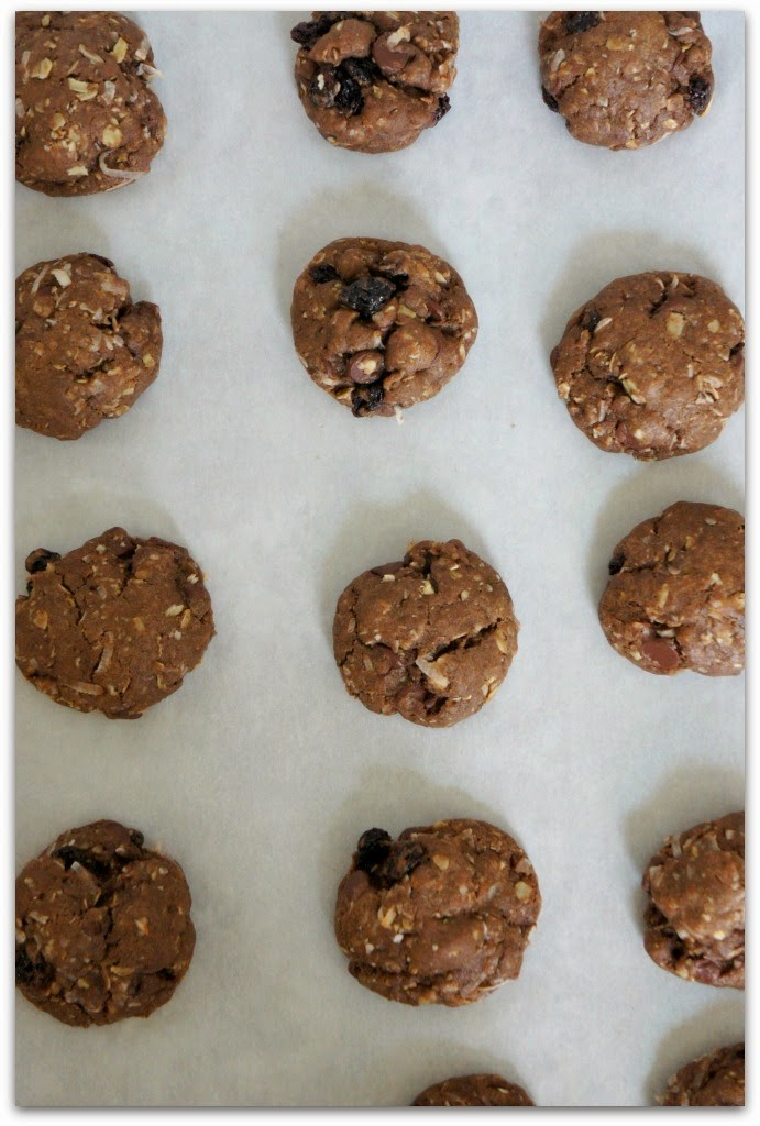 Recipe for Chocolate-Chocolate Chip-Oatmeal-Coconut-Raisin Cookies.  If you like cookies that are chocolat-y and chewy and full of texture you'll love these!