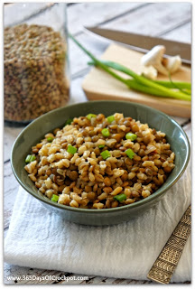 An easy crockpot recipe for lentil and barley pilaf.  This takes about 5 minutes to make!  It's chewy and full of flavor and fiber.  #lentils #slowcooker #healthyslowcooker #crockpot