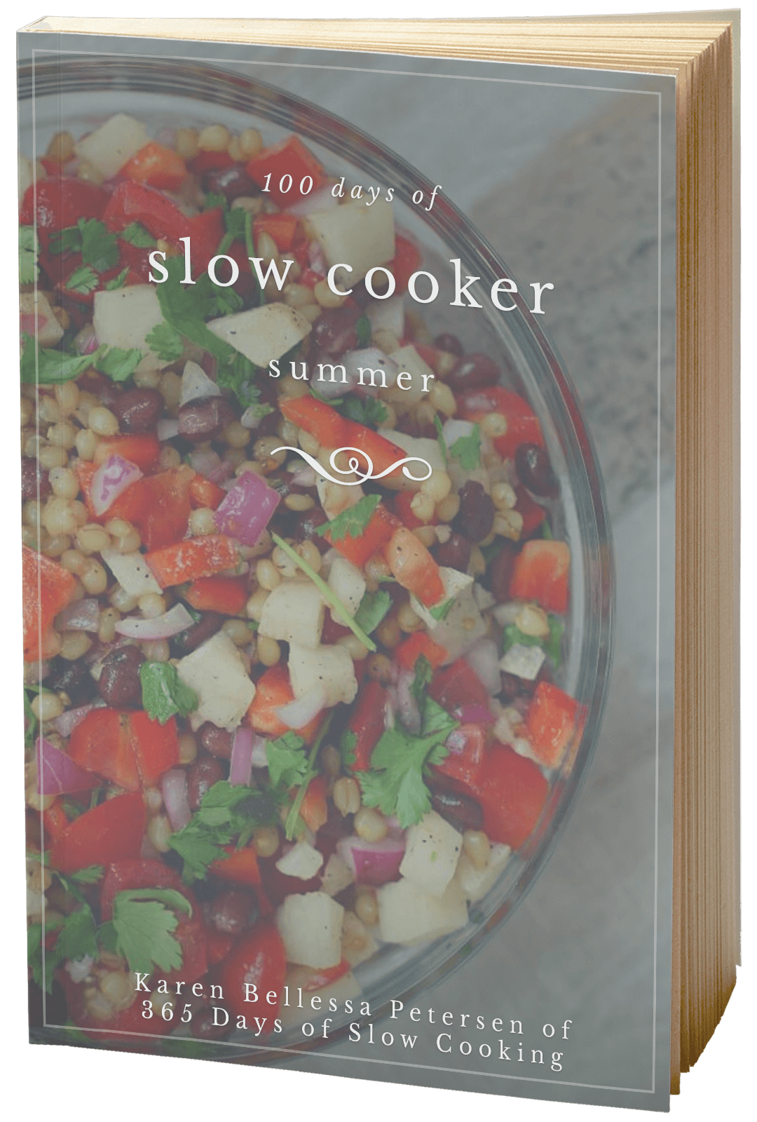 100 days of slow cooker summer 3d