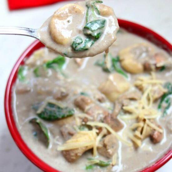 Slow Cooker Cream of Mushroom Tortellini Soup