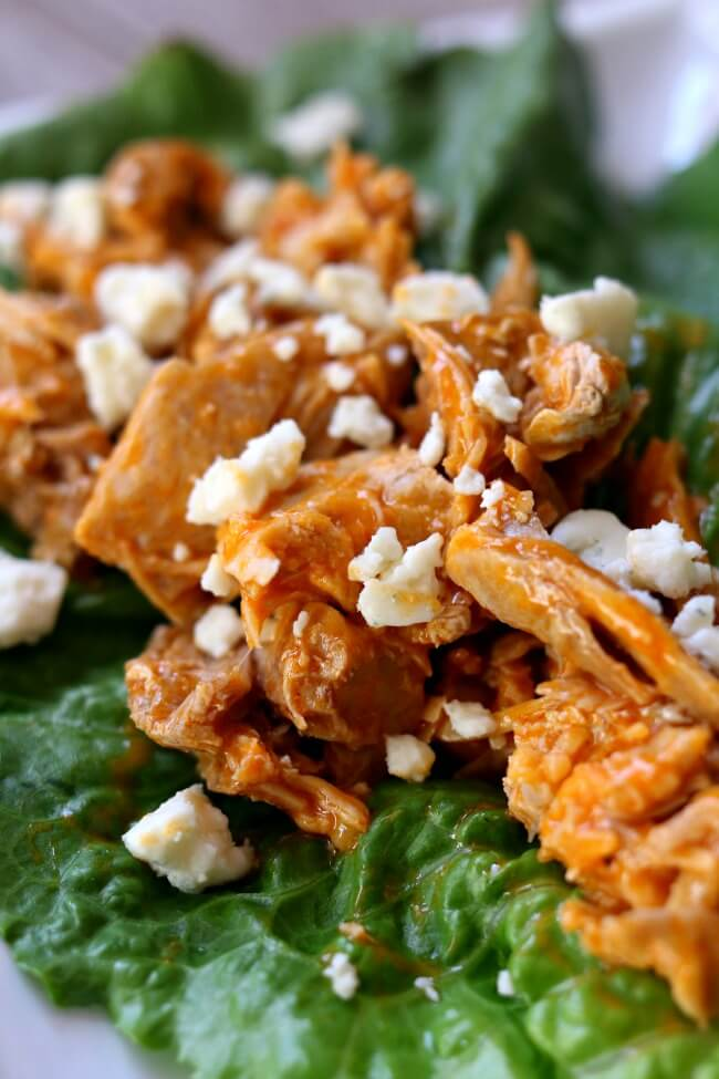 Buffalo Chicken Lettuce Wraps--shredded chicken coated with buffalo ...