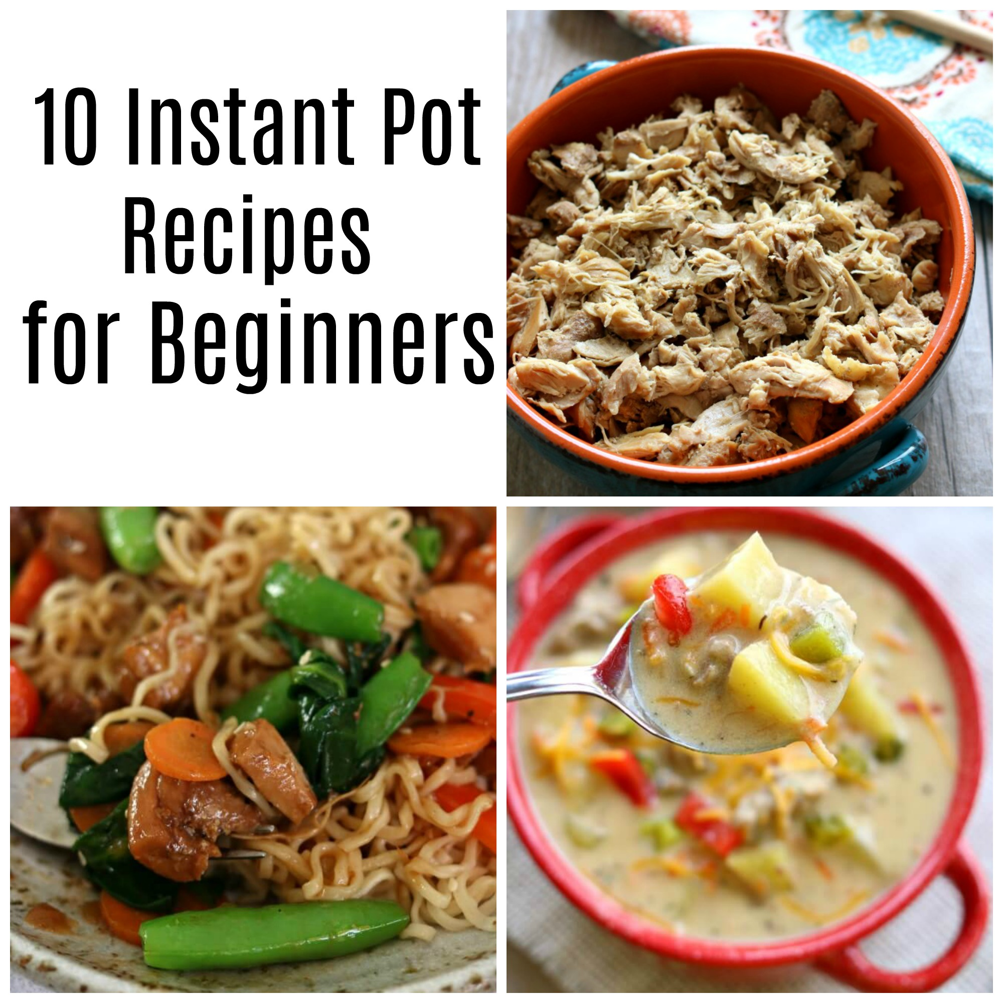 10 Instant Pot Recipes For Beginners
