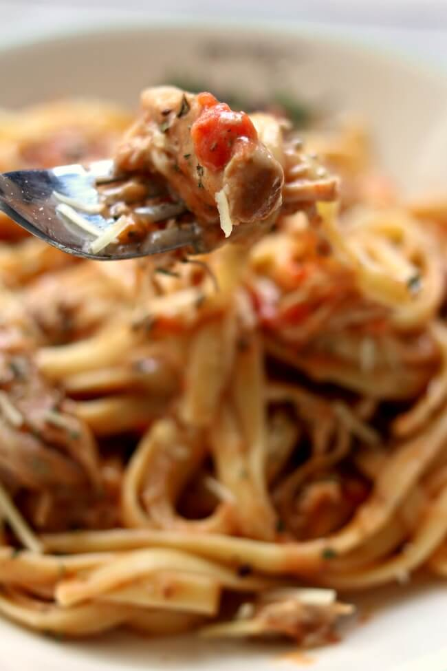 Slow Cooker Chicken and Creamy Sun-Dried Tomato Sauce--tender bites of chicken with a bold and rich basil, parmesan and sun-dried tomato sauce.