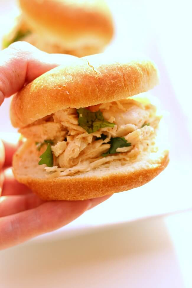Instant Pot Cilantro Lime Chicken Sliders--tender shredded chicken with lime and cilantro flavors served on a mini bun or roll. An easy recipe made with frozen chicken in minutes.
