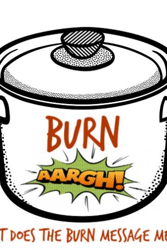 The Instant Pot burn message