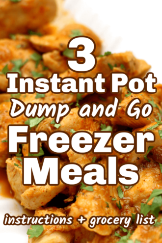3 Dump and Go Instant Pot Freezer Meals