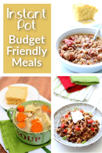 10 Instant Pot Meals Under $10